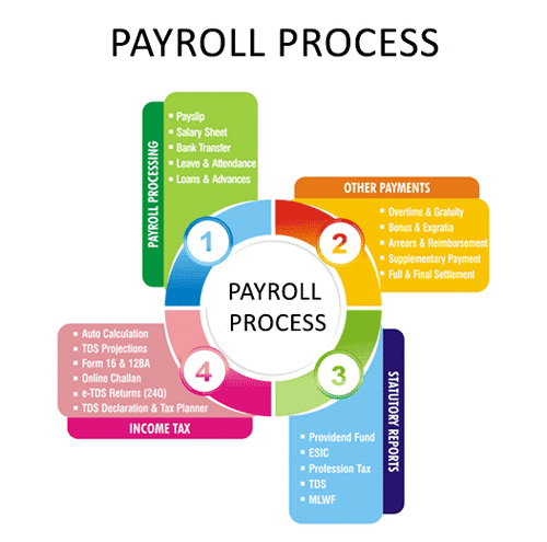 PEO Services, HR Services And Payroll Services For Small To Mid-size Company